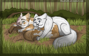 Brightheart and Cloudtail by Blaukralle