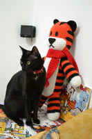 Hobbes plush and Yoko by MiaHandcrafter