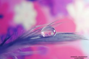 purple pink by lindahabiba