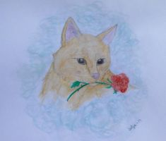 .:I brought you a rose:. by Siljaaz