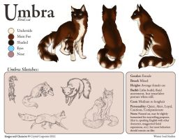 Umbra Character Sheet by soulofwinter