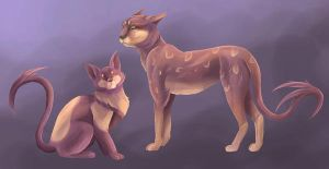 purple cats by Temerain