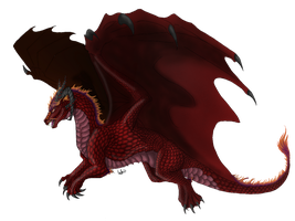 Ashenfury - Dragon by Reithya