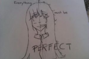 Everything must be... PERFECT by xShiroNekox