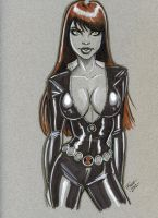 Black Widow by PatrickFinch