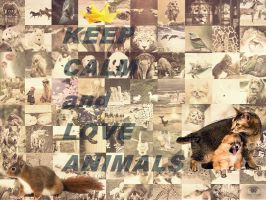 Keep Calm and Love Animals! by MyusaTeddy