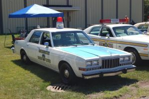 1987 Dodge Diplomat by JDAWG9806