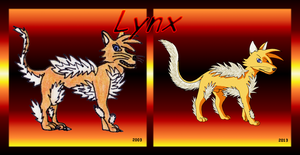 Lynx 2003 - 2013 by DisccatFR