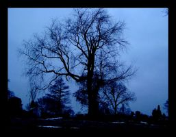 Graveyard Tree by JosephAngelo