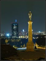 Belgrade at night by BorisMrdja