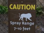 dangers of the san diego zoo by 1flame