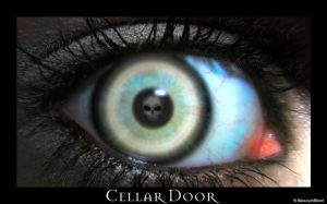 Cellar Door by donniedarko-club