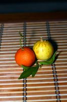 Fruits... by Adiphoto