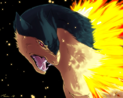 Typhlosion by mourum