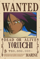 Wanted Yoruichi dead or alive by hinataconsuegra