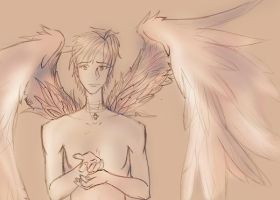 troubled wings by jac