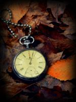 fallandtime by wroquephotography