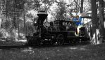 Outback Train in TOC by AlgeriArts
