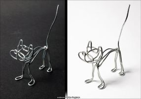 Little Wire Kitty by m0rpheus