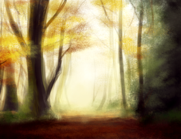 Forest by PolkaDotedFlower