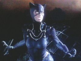Injustice: Gods Among Us - Catwoman's 2nd Outfit by TheRumbleRoseNetwork