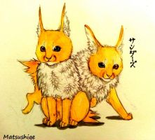 Jolteon Gemini by PokeShoppe