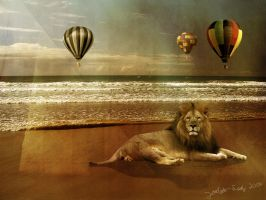 Lion at the beach wallpaper by Joalita-lady