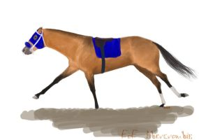 Racehorse by BearSteppinHoley