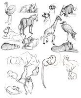 Animal Drawings 09 by rollingrabbit