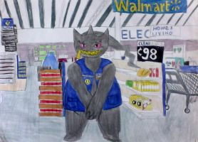 welcome to Wal* Mart by SalamenceCake