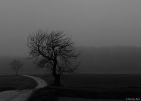 Memory s fog is rising... by MonaBe4