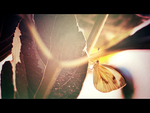 Butterfly by CaterinaZito