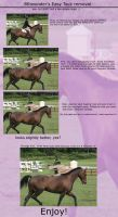 Tack removal tutorial by 8thwonder1994