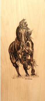 wood burned horse by EEWinters