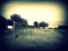 Lonely Country by Devoniia