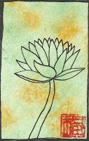 green lotus by acasas