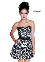 Nina Dobrev Png by emmagarfield