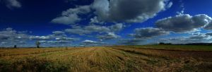 Field Panorama 4 by ClockworkTree