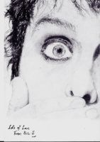 Billie Joe Armstrong by EvilEvie12