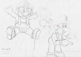Mario, Luigi and Peach by Fernatriforce