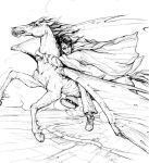 Harry rides the thestral by bluefooted