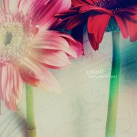 We by yylee07