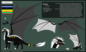Skyler Reference Sheet by mirzers