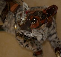 Steampunk Bobcat Detail face by Phoenix-Cry