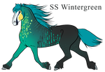 SS Wintergreen by amour-interdit