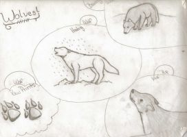 Wolf Collage by veronicle