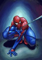 Spider-man:House of M_Colorz by FooRay