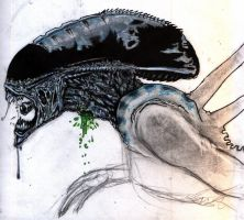 unfinished- wounded alien by rockedgirl