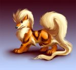 Arcanine new style by homa-Nix