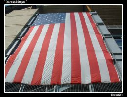 Stars and Stripes by shane613